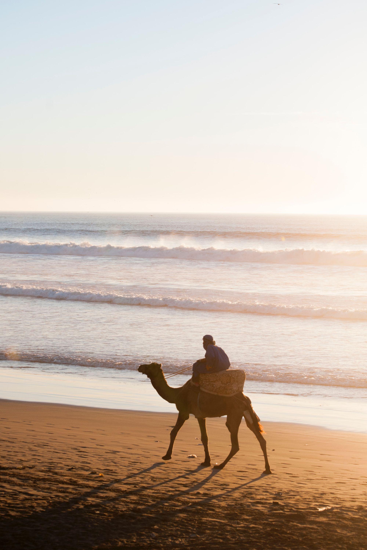 Horse-riding along the beautiful sand at Agadir beach