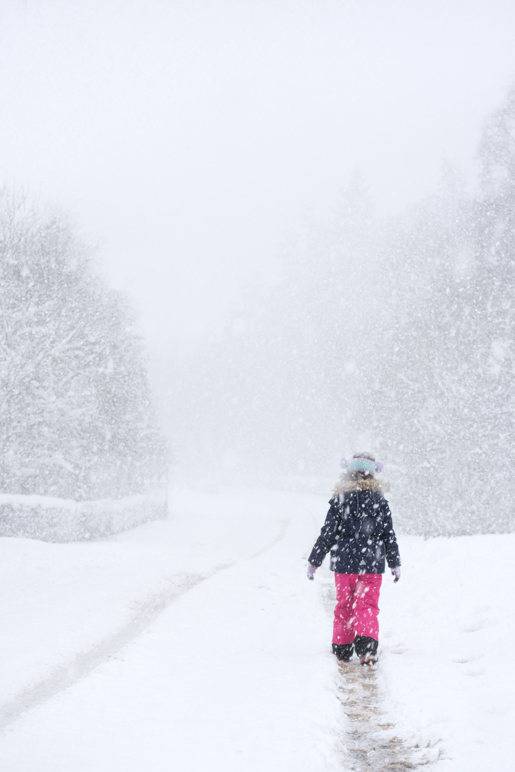Snow Activities in the Cairngorms National Park