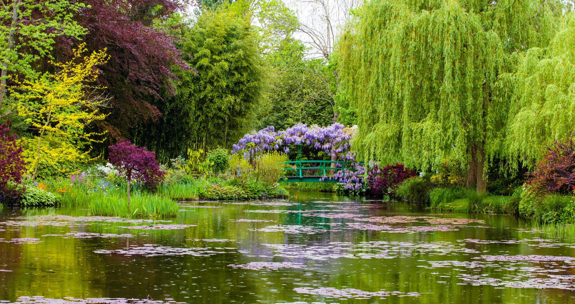 Monets japanischer Garten