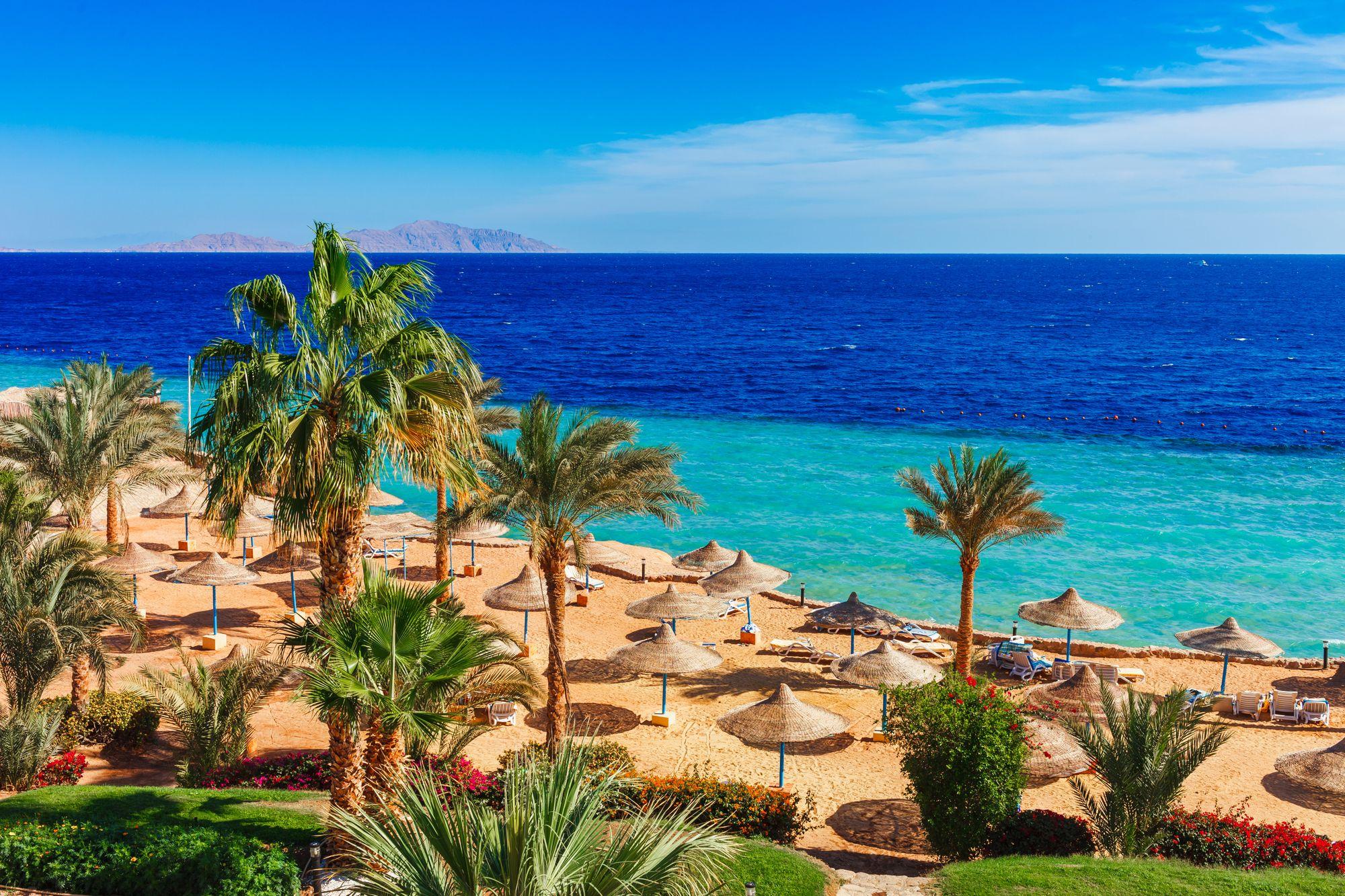 Халяль-френдли отдых на красном море Египта